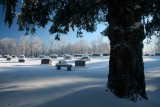 Hinkle Mtn Cemetery Frosted Timber and Big Spruce tb0211kar.jpg
