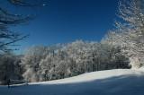 Contrasty Farm Field on Frosty Ridgeline tb0211kgr.jpg