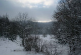 Winter Field and Woods Front Kennison Mtn tb0111lgr.jpg