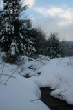 Headwaters Charles Creek Cloudy Winter Sky v tb0111lhr.jpg
