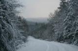 Cranberry Mtn Road Winter Scape tb0111lrr.jpg