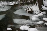 Icy North Fork Water Trails and Islands tb0211knr.jpg