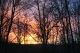Gold and Pink Sky Mountain Winter Morn tb0211kor.jpg