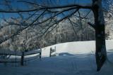 Shadows on Tree and Fence on Snowy Ridge tb0211lkr.jpg