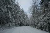 Cranberry Mtn Road into Pale Blue Sky Line tb0111lur.jpg