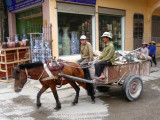 This horse and buggy went by me on the main street of Bat Trang.