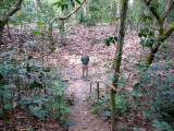 Me standing in the crater where a B-52 bombed the Cu Chi Tunnels.