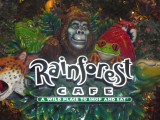 Inside MGM is the popular Rainforest Cafe.