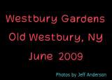 Westbury Gardens, Old Westbury, NY (June 2009)