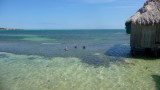 The water was crystal clear with many types of birds and fish.
