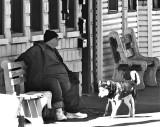 Honorary Mayor &  His Dog