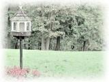 Empty Birdhouse - Photo Painting