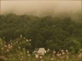 Pennsylvania Home In The Woods.jpg