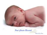 Pauls Chester Blesedell