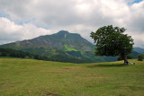 Mount Cusna