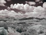 Arizona Infrared