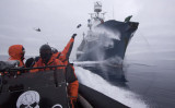 Sea-Shepherd crewmember.jpg