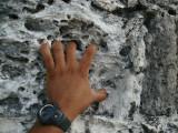 Rock Climbing Tikal