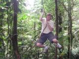Chip - Tarzan of the Jungle in Tenorio National Park