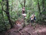 Robin (Jane) Swinging Through Jungle