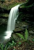 Campbell Falls 1