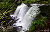 Log Falls 2