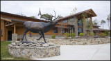 Elk Center