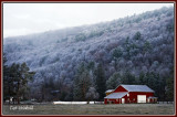 Hoarfrost coats a hillside fronting Rt 6 near Coudersport.