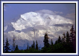 Denali from Wonder Lake Campground