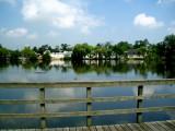 Roslyn Harbor.jpg