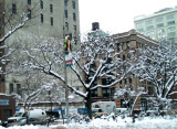 Tribeca after the snow