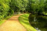 Magical walk in Oxford