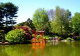 Brooklyn Botanic pagoda