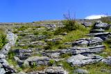 Ascending the burren