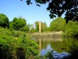 A secret pond on Shelter Island