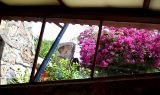The view from Frank Lloyd Wright's office at Taliesen West