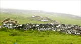 Ireland in the mist