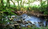 Stream near Yeats Tower