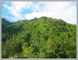 Basse montagne