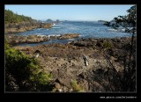 Wild Pacific Trail #1, Ucluelet, Vancouver Island