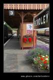 Bewdley Station #17