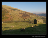 Swaledale Barns #02, Yorkshire Dales