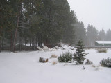 Bend snow storm