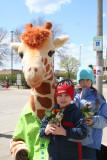 Hugging Geoffrey the Giraffe is Fun!