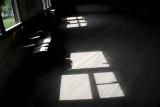 The old dance floor