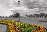Flower Garden at Niagara