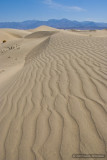 Tromping Around the Dunes