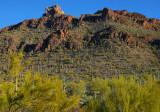 Bit of Scenic Sonoran Desert