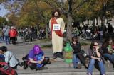 Sanity Rally