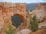 The Natural Bridge at Bryce Canyon
